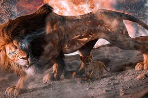 Lion And Cub Journey 4k