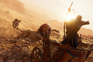 Lions Assassins Creed Origins 4k Wallpaper
