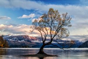 Lone Tree Lake Wanaka
