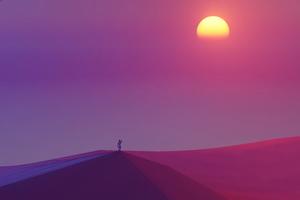 Looking At Sun In Desert 5k Wallpaper