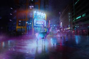 Lost Deer 5k