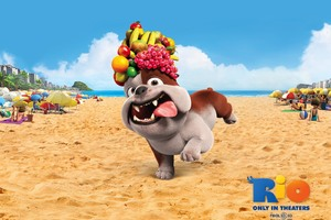 Luiz Bulldog In Rio Movie Wallpaper