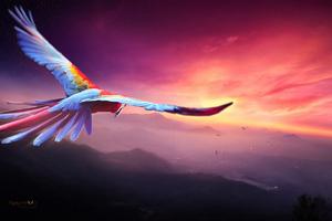 Macaw Flight Digital Art 4k