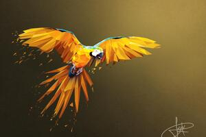 Macaw Low Poly Digital Art 4k Wallpaper