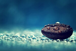 Macro Photography On Coffee Bean Wallpaper