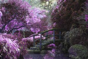 Magical Garden 5k