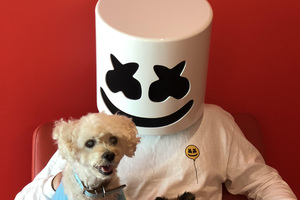 Marshmello With Dog