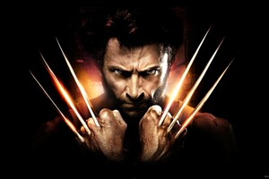 Marvel Wolverine Wallpaper