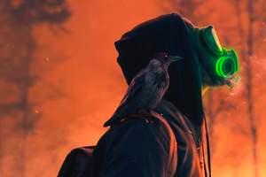 Mask Boy With Raven 4k Wallpaper
