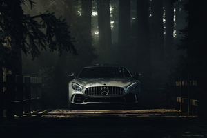 Mercedes Benz Amg GT Deep Forest