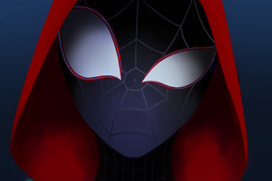 Miles Spider Man Wallpaper