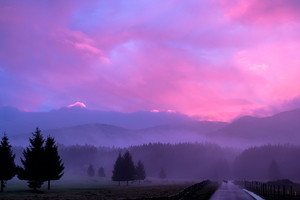 Misty Pink Sunset