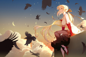 Monogatari Series Anime Girls Oshino Shinobu 4k Wallpaper