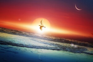 Moon Sun Art