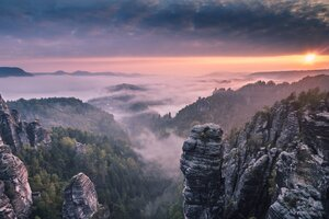 Morning Forest Mountains