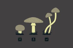 Mushroom Minimalism Wallpaper
