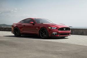 Mustang New 4k Wallpaper
