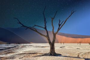Namibia Deadvlei Panorama 5k Wallpaper