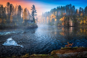 Nature Water Trees Fall Landscape