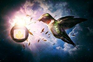 Nectar Heaven