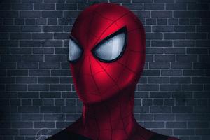 New Spider 4k
