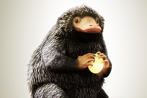 Niffler In Fantasic Beasts And Where To Find Them 4k