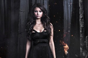 Nina Dobrev In Vampire Diaries Wallpaper