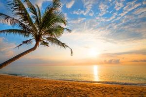 Ocean Landscape Horizon Nature 5k