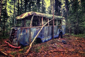 Old Vintage Bus In Forest Wallpaper