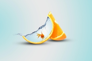 Orange Artwork