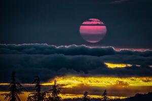 Oregon Yellow Pink Sunset 4k