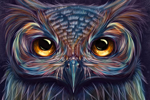 Owl Colorful Art 5k