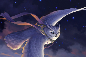 Owl Highwind Glider Wallpaper