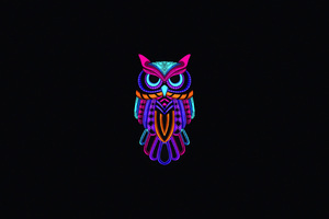 Owl Minimal Dark 4k Wallpaper