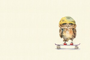 Owl On Skateboard