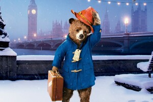 Paddington Wallpaper