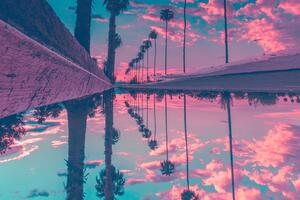 Palm Trees Reflection Sky