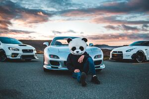 Panda Boy With Cars 5k Wallpaper