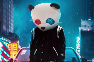 Panda Cool On Street 4k Wallpaper