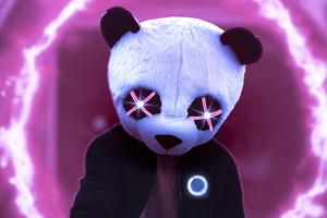 Panda Glowing Eyes 5k Wallpaper