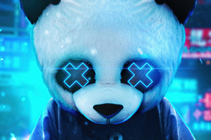 Panda Guy 4k Wallpaper