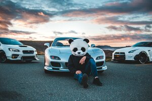 Panda Helmet Guy With Cars Wallpaper