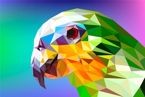 Parrot Polygon Facets
