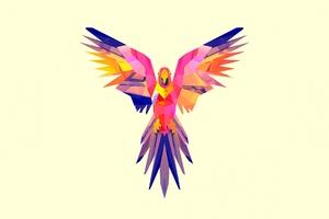 Parrot Vector Wallpaper