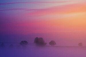 Pastel Morning 5k