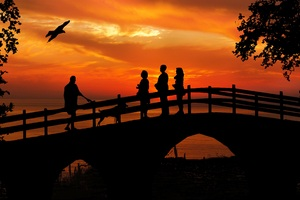 People Standing On Bridge Dog Bird Silhouette Wallpaper