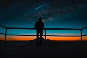 Person Silhouette Meteors Night Sky 8k Wallpaper