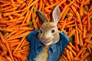Peter Rabbit 2018 4k