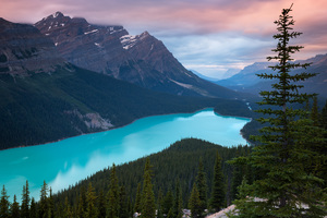Peyto Lake Canada Mountains 4k