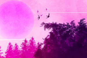 Pink Birds Forest Landscape 4k Wallpaper